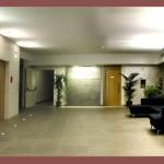 sea_lion_hotel_montesilvano 009