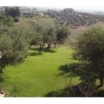 appartamento.il-giardino1gk-is-170